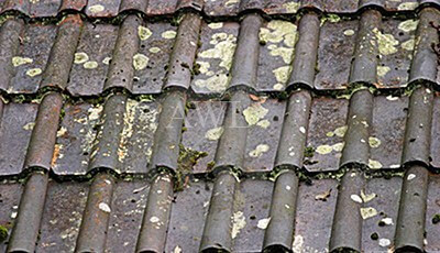 Clean your roof keep it clean saves money - Reasons get roof cleaned ...