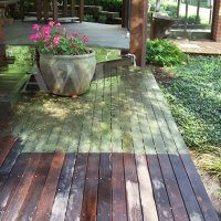 house_wash__deck_during