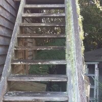 Image of a set of wooden steps showing Lichen growing directly out of the rails and bannister.